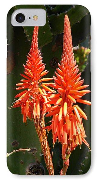 IPhone Case featuring the photograph Orange Succulent by Lew Davis