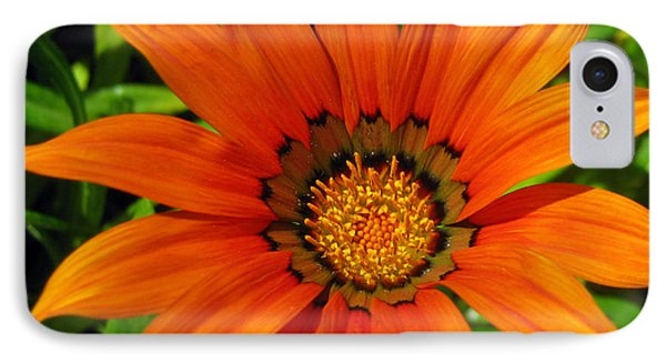 IPhone Case featuring the photograph Orange Sunshine by Janice Westerberg