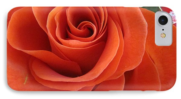 Orange Twist Rose 2 IPhone Case by Tara  Shalton