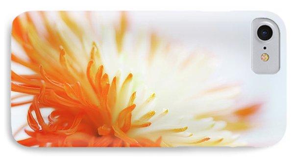 Orange Whisper Phone Case by Lisa Knechtel