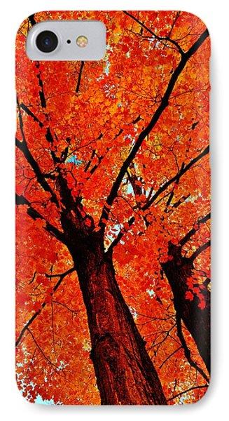 Orange...the New Green IPhone Case by Daniel Thompson
