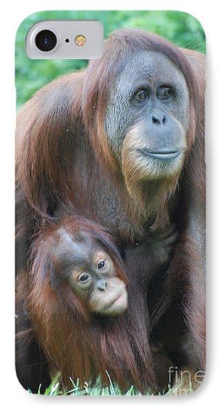 Orangutan IPhone Case by DejaVu Designs