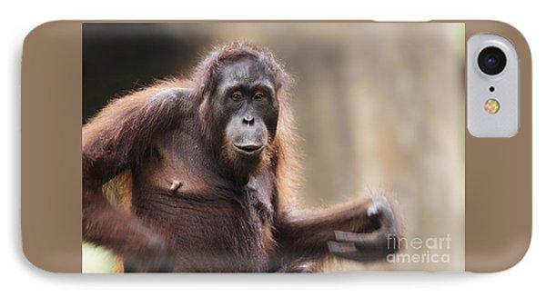 Orangutan IPhone Case by Richard Garvey-Williams
