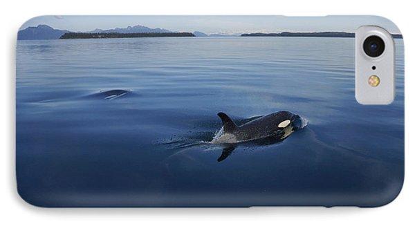 Orca Pair Surfacing Prince William IPhone Case