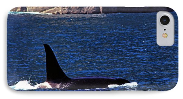 Orca Surfacing Phone Case by Thomas R Fletcher