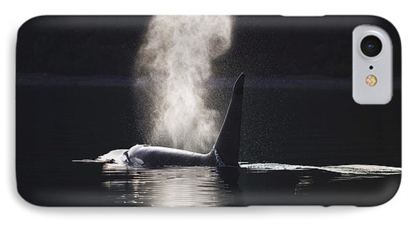Orca Whale Surfaces Along A Forested Phone Case by John Hyde