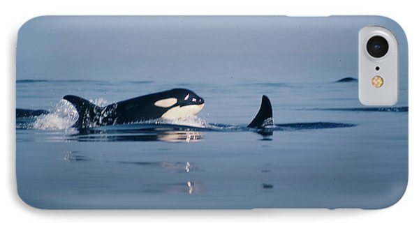 IPhone Case featuring the photograph Orcas Off The San Juan Islands Washington  1986 by California Views Mr Pat Hathaway Archives