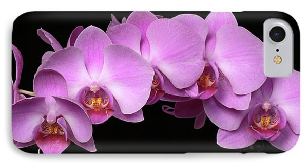 Orchid Arch IPhone Case by Harold Rau
