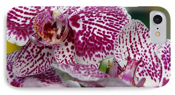 Orchid Art Phone Case by Greg Patzer