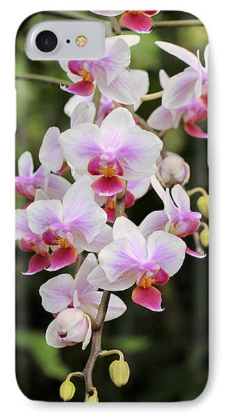 Orchid Cascade IPhone Case by Harold Rau
