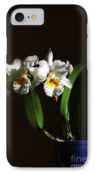Orchid Cattleya Bow Bells Phone Case by Charline Xia