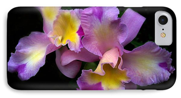 Orchid Embrace IPhone Case by Jessica Jenney