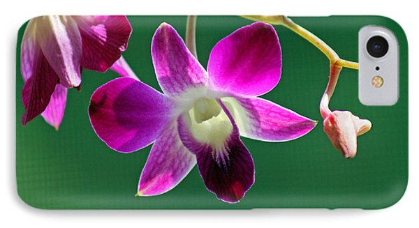 Orchid Flower Phone Case by Karen Adams