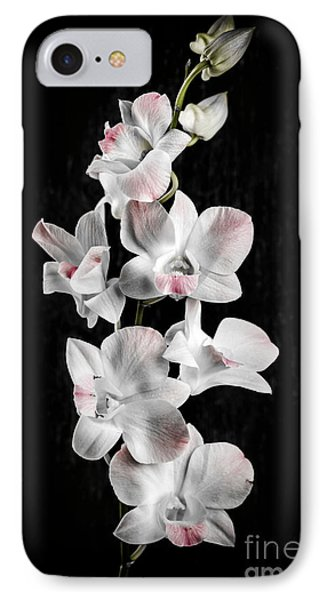 Orchid Flowers On Black IPhone 7 Case by Elena Elisseeva