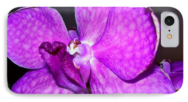 Orchid From Art Gallery IPhone Case by Randy Rosenberger