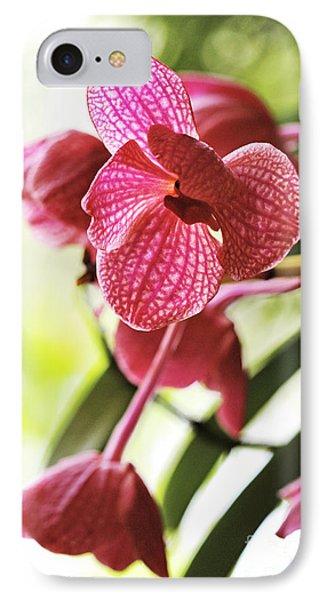 Orchid II Phone Case by Pamela Gail Torres