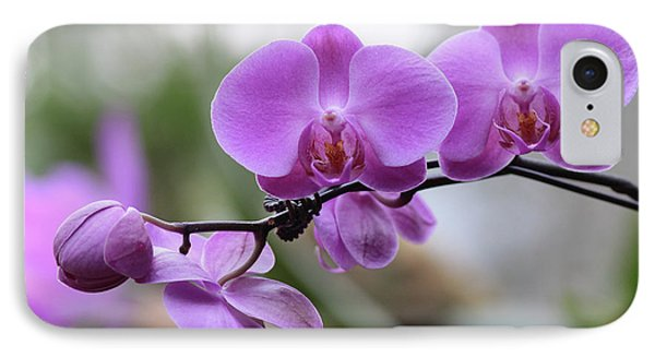 Orchid In Bloom IPhone Case by Harold Rau