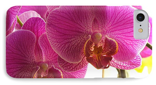 IPhone Case featuring the photograph Orchid by Lingfai Leung