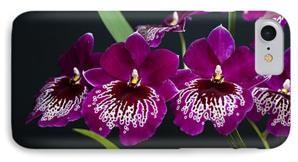IPhone Case featuring the photograph Orchid Miltonia by Lana Enderle