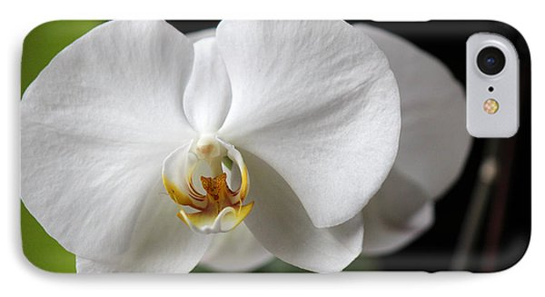 IPhone Case featuring the photograph Orchid by Silke Brubaker