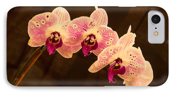 Orchid Triad 2 IPhone Case