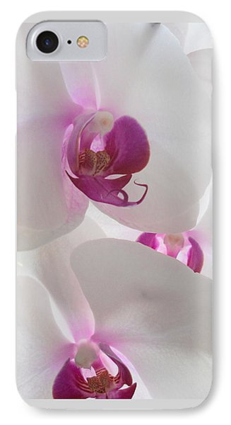 Orchid Trio IPhone Case by Kathy Spall
