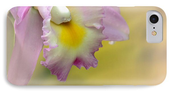 Orchid Whisper IPhone Case by Sabrina L Ryan