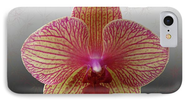 IPhone Case featuring the photograph Orchid  With Stars by Donna Brown