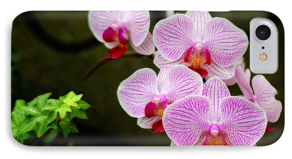 Orchids And Ivy IPhone Case by Trina  Ansel