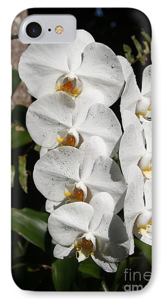 Orchids Anna IPhone Case