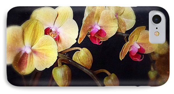 Orchids Arise IPhone Case by Becky Lupe