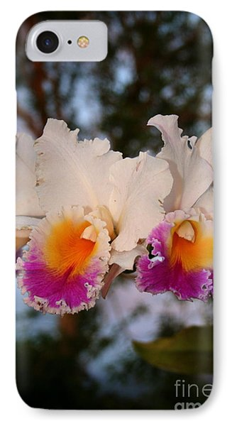 IPhone Case featuring the photograph Orchid Elsie Sloan by The Art of Alice Terrill