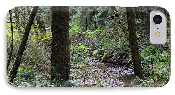 Oregon Coastal Creek IPhone Case