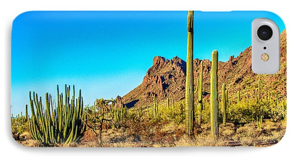 Organ Pipe Cactus National Monument Late Afternoon Phone Case by Bob and Nadine Johnston