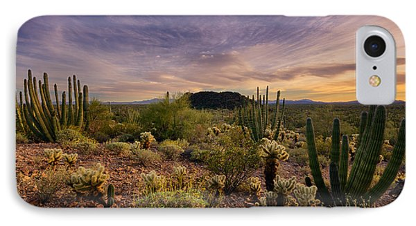 Organ Pipe Cactus Sunset  Phone Case by Saija  Lehtonen