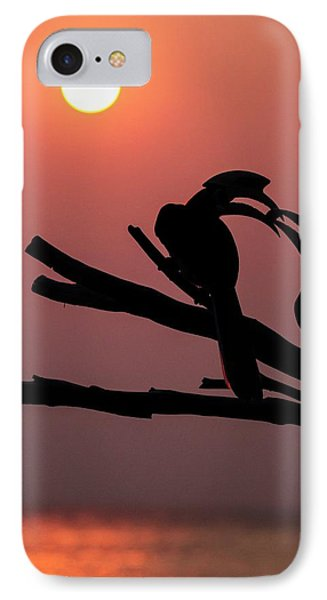 Oriental Pied Hornbills IPhone Case by Paul Williams