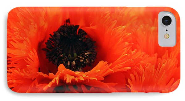 Oriental Poppy IPhone Case