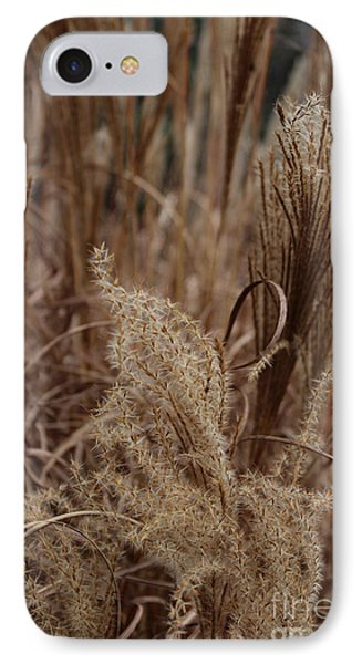 Ornamental Grass Phone Case by Arlene Carmel