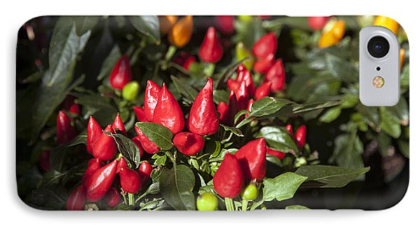 Ornamental Peppers Phone Case by Peter French