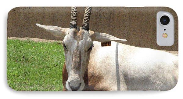 Oryx IPhone Case by DejaVu Designs
