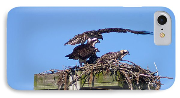Osprey And Chicks IPhone Case