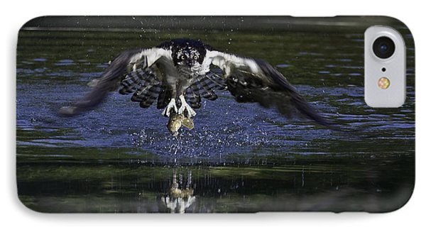 IPhone Case featuring the photograph Osprey Bird Of Prey by David Lester