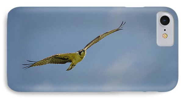 IPhone Case featuring the photograph Osprey by Bradley Clay