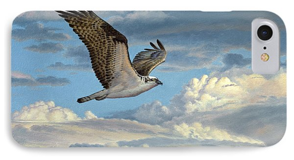 Osprey In The Clouds IPhone Case by Paul Krapf