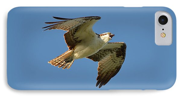 Osprey IPhone Case