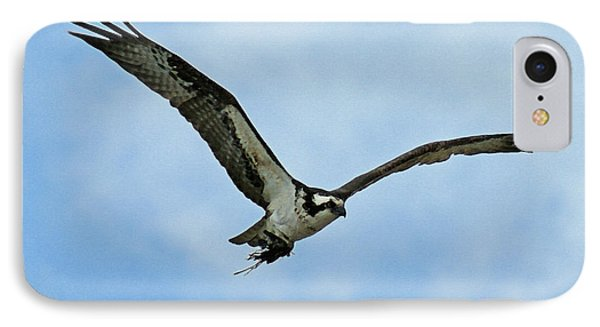Osprey Nest Building IPhone Case by Ernie Echols