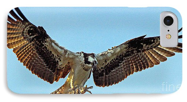 Osprey Talons First IPhone Case
