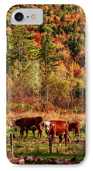 IPhone Case featuring the photograph Cow Complaining About Much by Jeff Folger