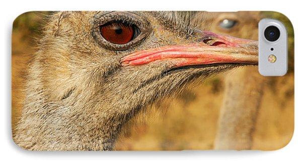 Ostrich Closeup Phone Case by Jess Kraft