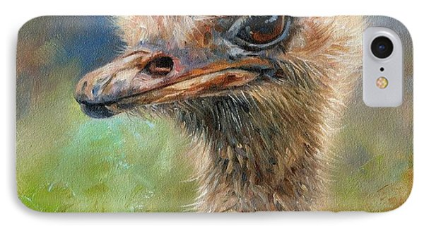 Ostrich IPhone Case by David Stribbling